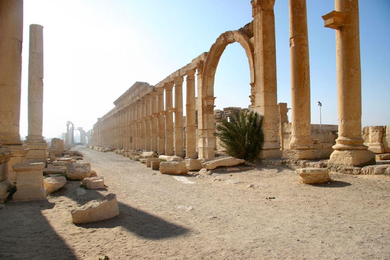 Marchito vértice Fortaleza  Palmira, la perla del desierto. Actualidad.