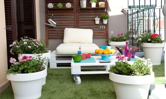 Las plantas y el verano flores y plantas blog flor - Plantas para terrazas con mucho sol ...