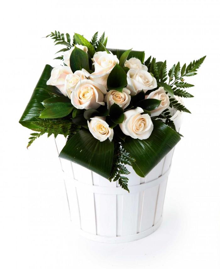 12 rosas blancas_bouquet-12-rosas-blancas