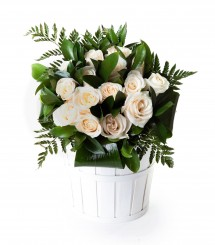 15 rosas blancas San Valentín