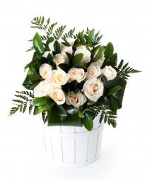 18 rosas blancas