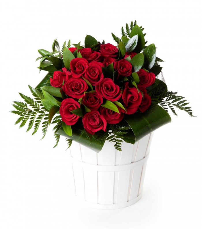 18 rosas rojas_bouquet-18-rosas-rojas