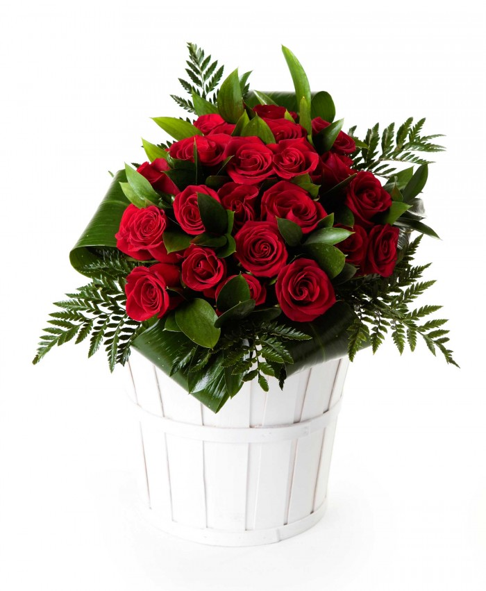 24 rosas rojas_bouquet-24-rosas-rojas