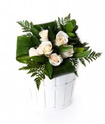 6 rosas blancas
