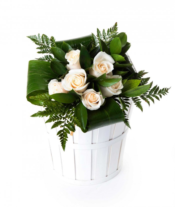 6 rosas blancas_bouquet-6-rosas-blancas