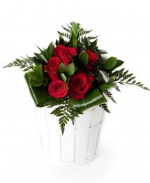 6 rosas rojas
