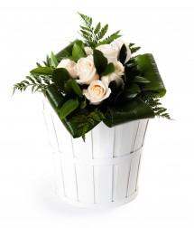 7 rosas blancas San Valentín