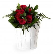 7 rosas rojas San Valentín