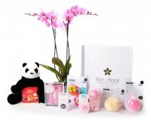 Orquidea 2 varas y caja regalo total rosa + regalos